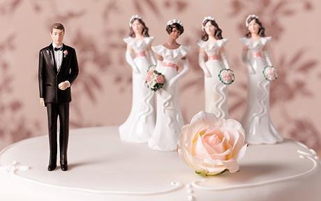 polygamy_1318313c
